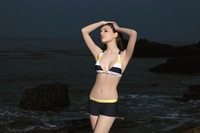 Женское бикини 2011! sexy bikini, hot swimwear, woman ladies swimwear 11206