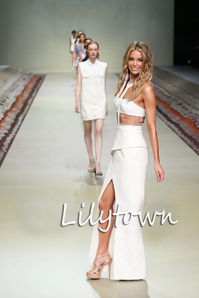 Fashion Show Dress Drop Hot Runway Fashion Show Model