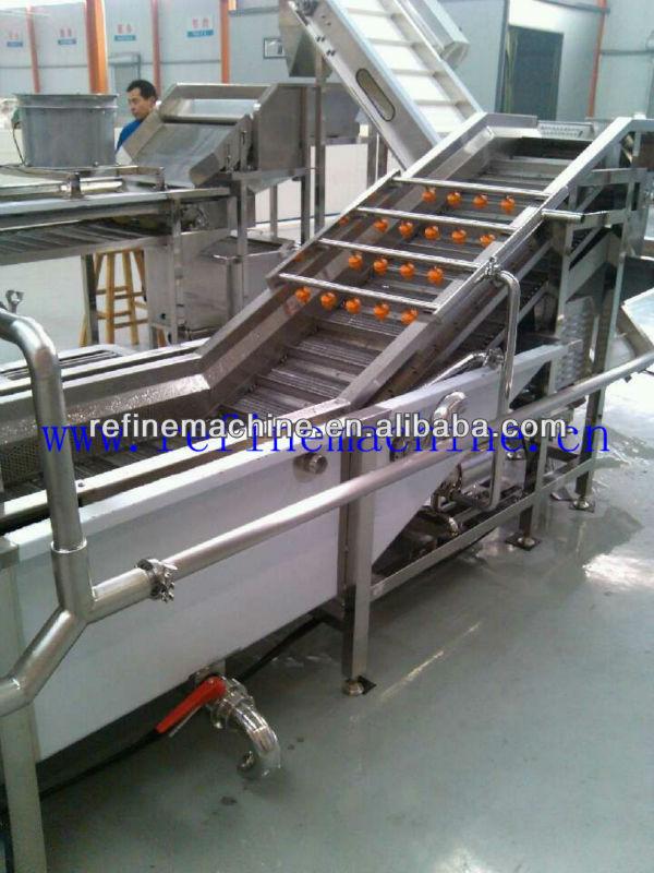 Raisin/Apricot washing Machine