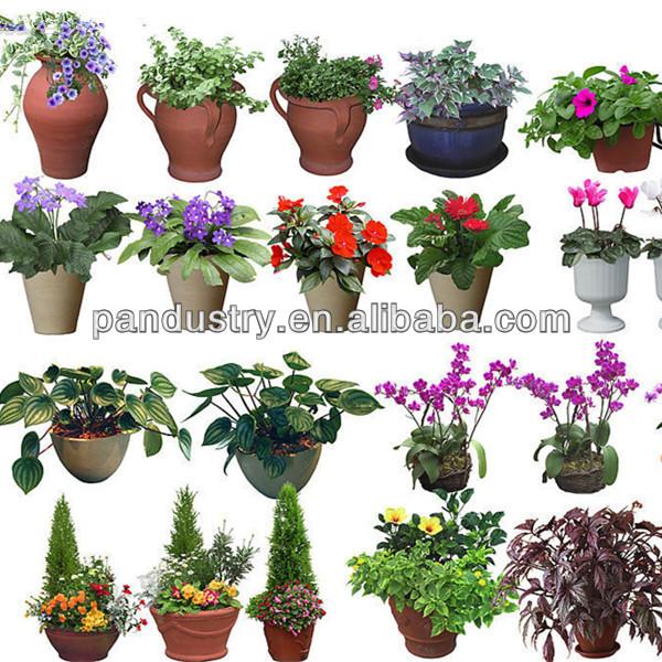 95%TC 5%WP Ornamental plants Uniconazole, View Uniconazole, PANPAN