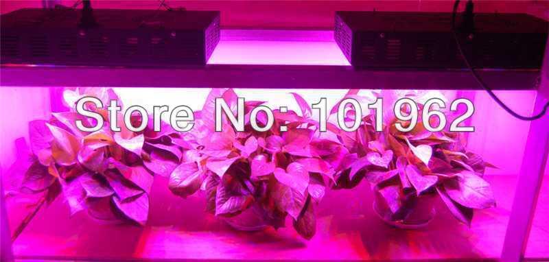 new china wholesale 3pcs 300w led grow lights for sale us127. Black Bedroom Furniture Sets. Home Design Ideas