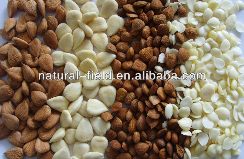 amygdalin 98% Prunus armeniaca extract