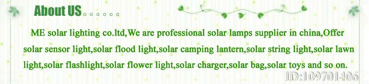NEW!!!USB&Solar battery charger for AA or AAA battery  1W Solar and USB Battery charger Rechargeable battery Charger