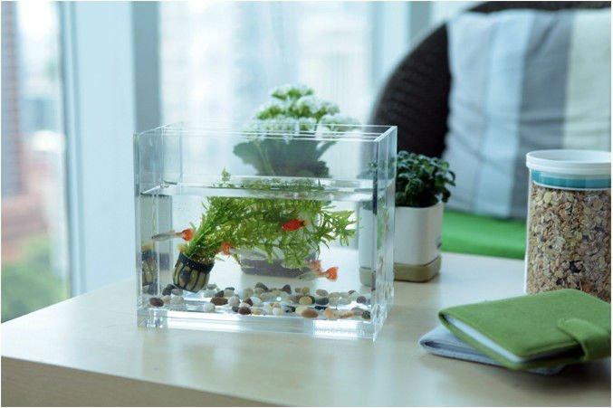 customized vertical table fish aquarium