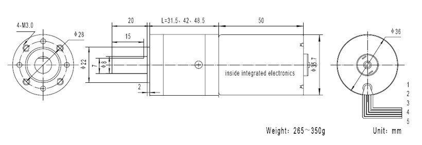 GMP36-TEC3650