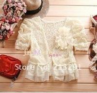 Free shipping wholesale and retail Korean fashion simple wild lace chiffon beige V neck shawl