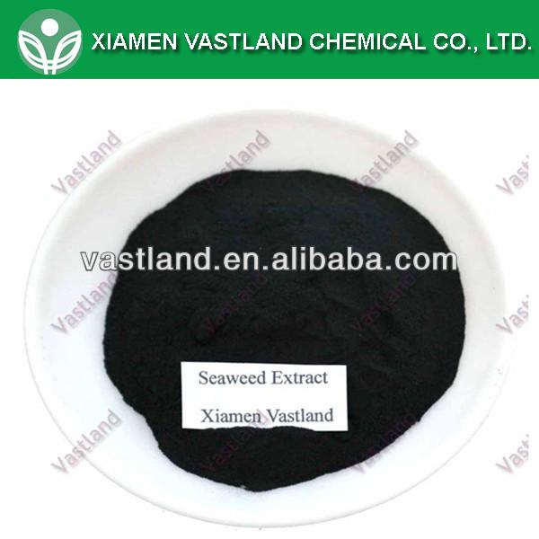seaweed extract_.jpg
