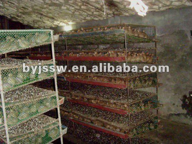http://i00.i.aliimg.com/img/pb/070/219/488/488219070_768.jpg