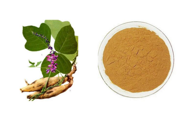 kudzu flavone ginkgo flavone glycosides terpene lactones