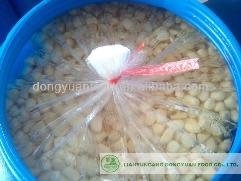peeled garlic cloves in brine 2014 natural garlic from china