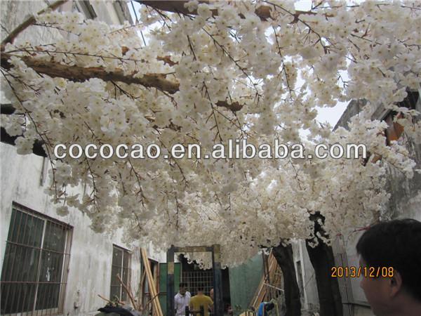 Hoa Anh Dao Gia Đào Giả Blossm Cây Hoa
