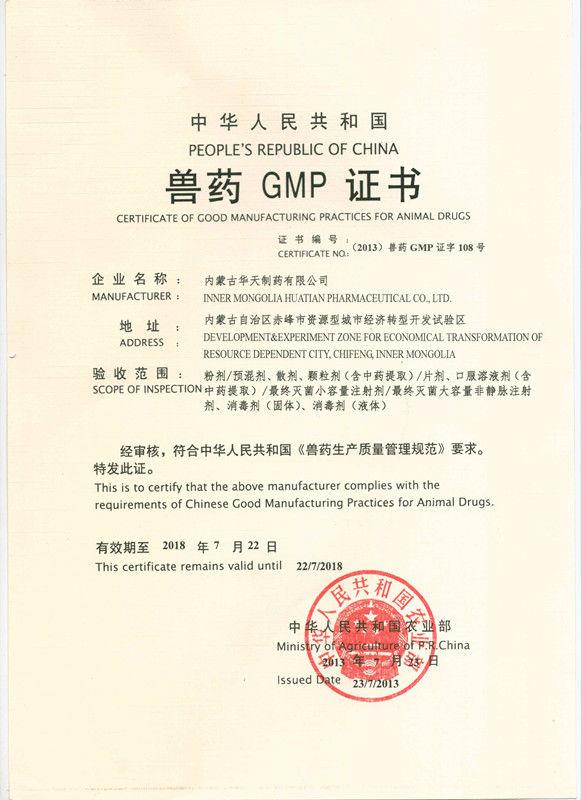 GMP_.jpg