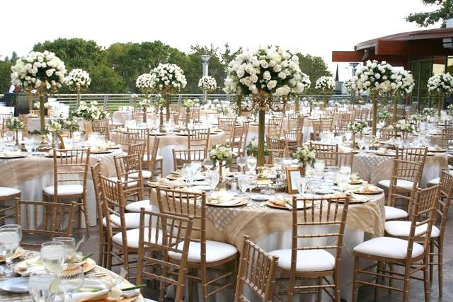 Ceremony silla tiffany chair buy ballroom chair ceremony chair