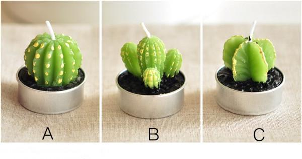 Mini Cactus Candles Plant .jpg