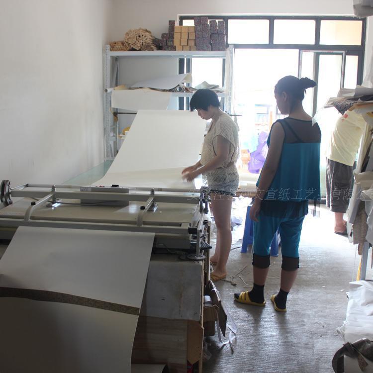 Китайская рисовая бумага ручной работы прекрасно оформлена розовый Суан бумаги ручной прокрутки