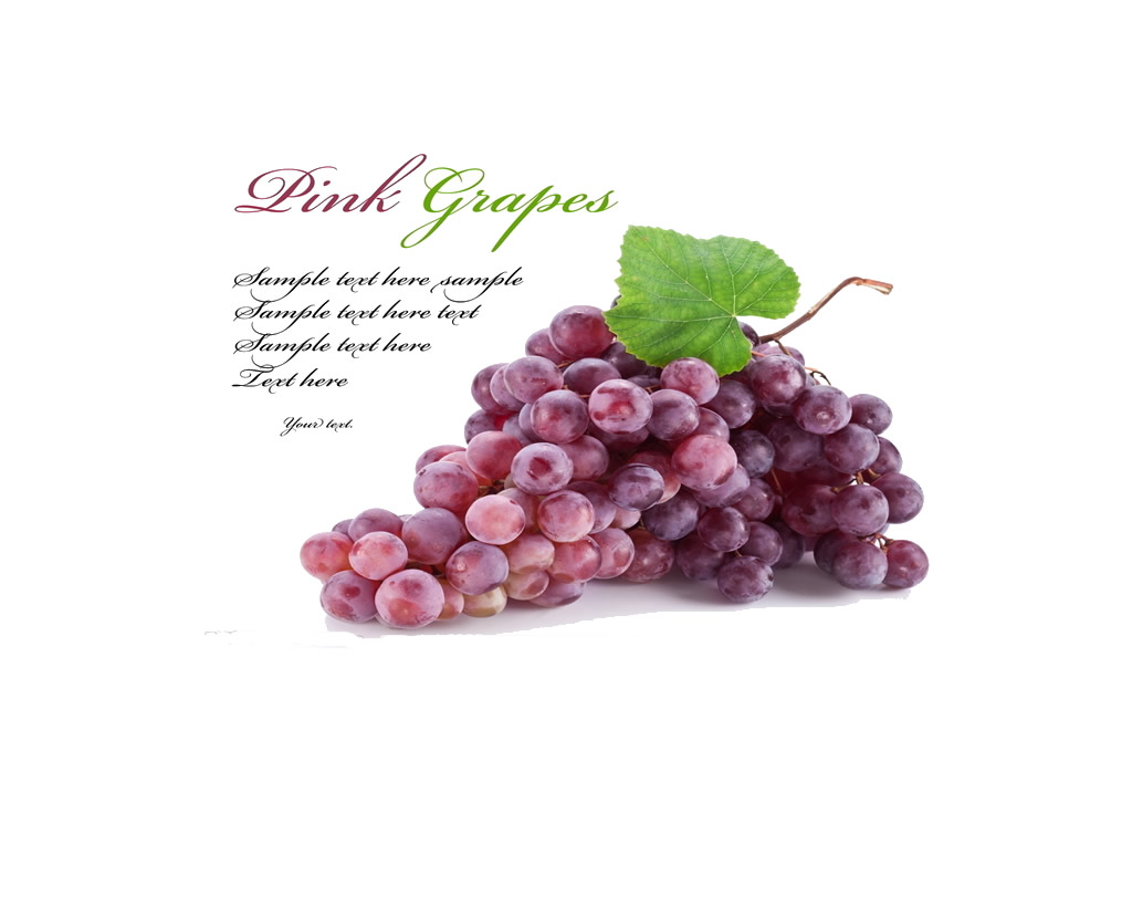 100% natural Top quality grape seed extract softgel