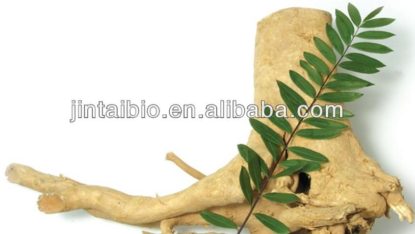 top quality 100:1 tongkat ali herbal extract