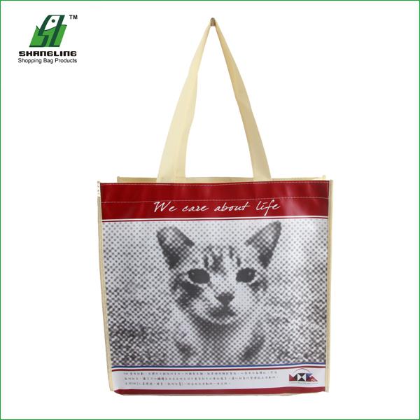75g 100% Biodegradable Ecofriendly Cheap PP Non Woven Shopping Bag