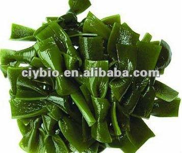 extracto de algas marinas Fucoidan