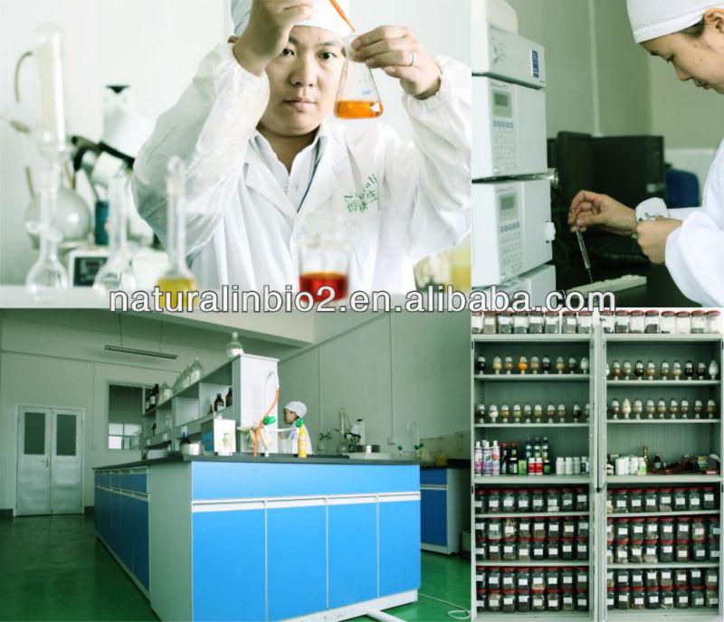 Black Cohosh Extract Triterpene glycosides 2.5% (HPLC)