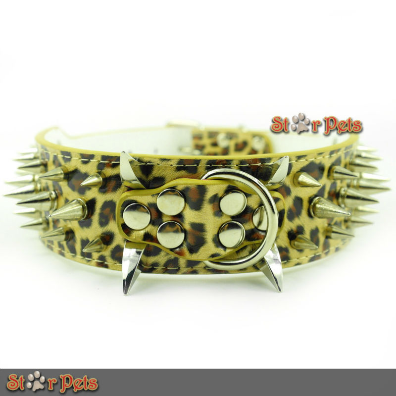 CL072 GOLD LEOPARD
