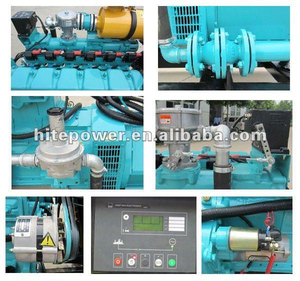 metano plants10kw 20kw 30kw 40kw 50kw pequenas turbinas a gás gerador