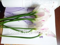2012 Hot Sale! High Simulation Flower / Artificial Flower mix color / Wedding Decoration Eva Calla Lily Silk Flower / FL052-3