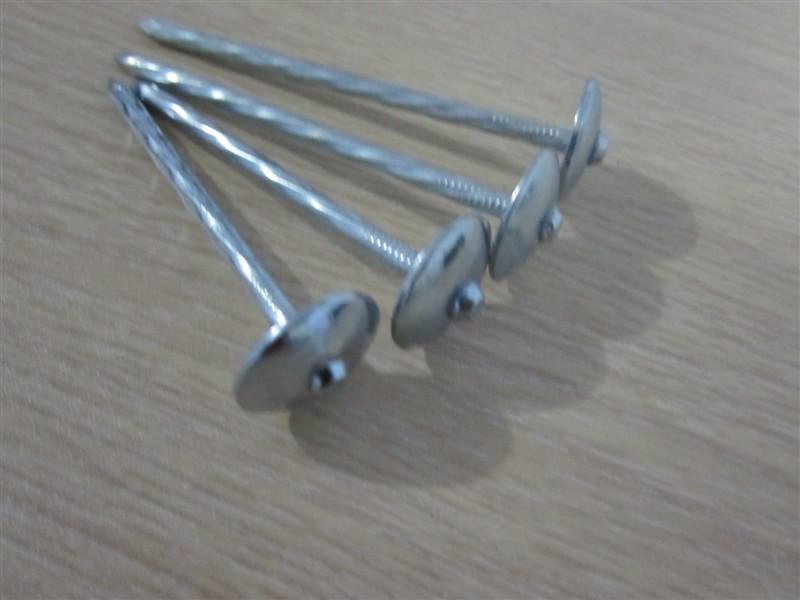 Umbrella Head Roofing Nails asphalt shingle Manufacturer Direct Quality Assurance Best Price