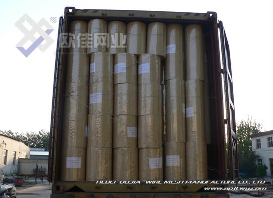 China wholesaler supply Welded Wire Mesh 3/4 inch