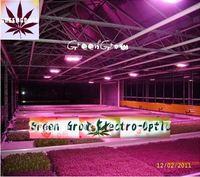 Освещение для растений GG 300W , dropshipping GG-ZWD-300W(96*3W)