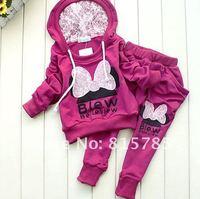Комплект одежды для девочек Girls Suit Baby Set Longsleeve Hoody Jacket+ Pants 2 Colors in Stock