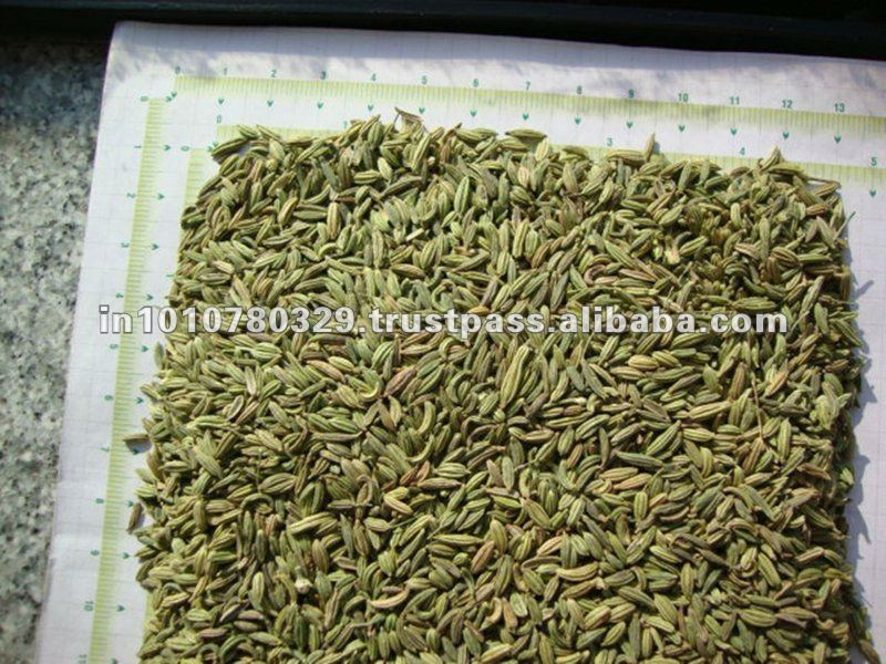 Fennel Seeds in Arabic Premium Quality Fennel Seeds