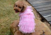 Одежда для собак Joopet  JP-0129