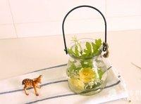 Free Shipping Lantern Flower Pot/ Glass Garden Pot/ Cork Bottles/ Water Jar/ korean Stationery wholesale