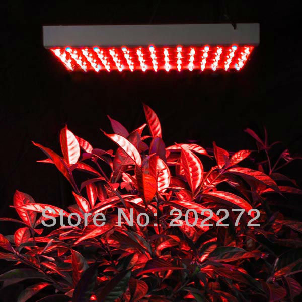 14W 225LED Grow Light Panel (6)