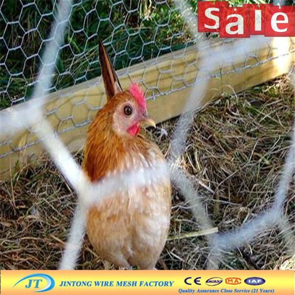 galvanized anping hexagonal mesh/chicken wire