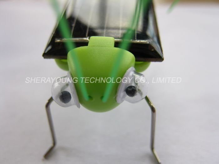 Funny Solar Grasshopper, Mini Car, cockroach,Bug Educational Toy