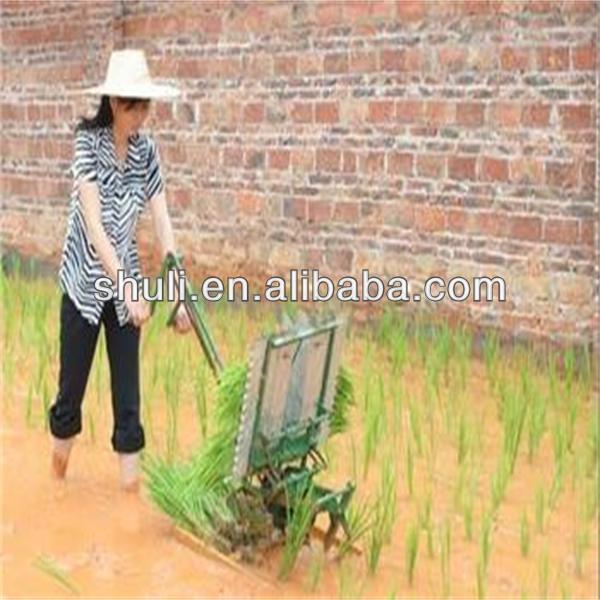 rice planter machine