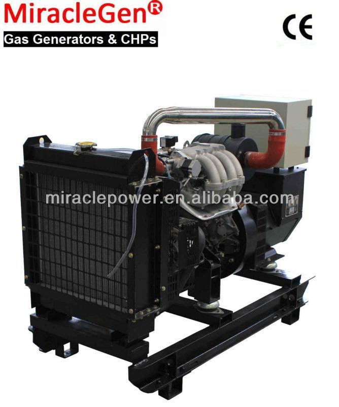 Biogas Generator 15kW