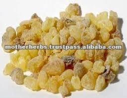 High Quality Boswellia Serrata