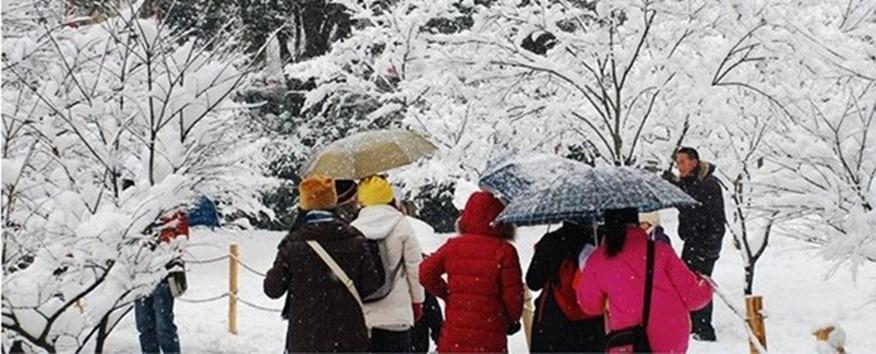 Скидки на Бесплатная доставка!!! матери среднего возраста женщина новые зимние толстые теплые пальто на вате большой ярдов короткий/L-4XL