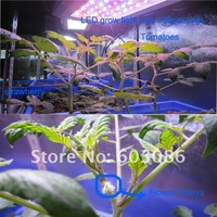 Теплицы, Аксессуары Buy 5 get 1 activity, 3 year warranty 3w epistar chip 600 W led grow lamp panel