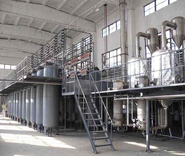 Ginkgo Biloba extract 24/6 FREE shipping