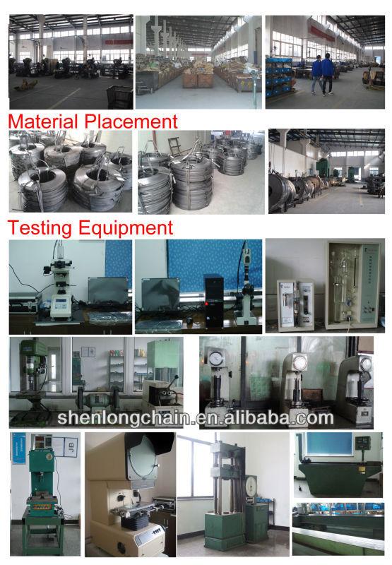 Shenlong Chain PIcture two.jpg