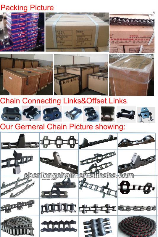 Shenlong Chain Picture three.jpg