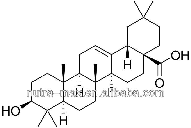 NutraMax Supplier--Glossy Privet Fruit Extract Oleanolic Acid 10%~98%