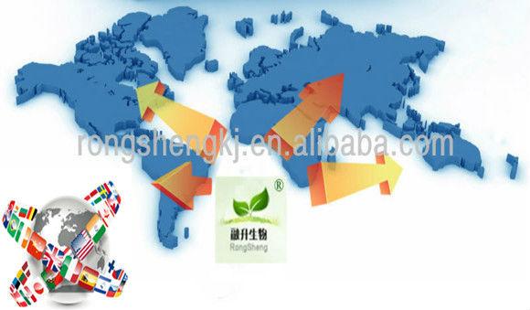 Chamomile Extract Apigenin 98%,Chamomile Extract