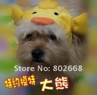 Sweet Pet Hat cat hat dog pet products 7 styles free shipping