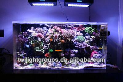 Modern Design Odyssea Aquarium Light For Arine Mammals Turtles ...