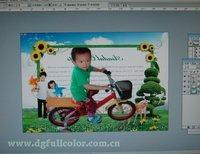 Фотобумага Fcolor & & A4